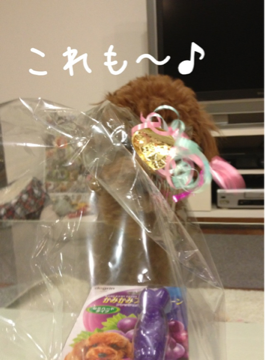 iphone/image-20130124192244.png